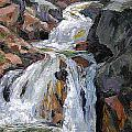 The Trail Series - Waterfalls by Frederick Hubicki