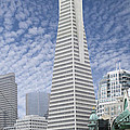 The Transamerica Pyramid - San Francisco by Mike McGlothlen