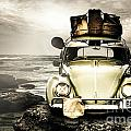 The Travel Bug by Jorgo Photography - Wall Art Gallery