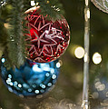 The Tree 2012   5651 by Terri Winkler