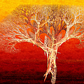 The Tree In Fall At Sunset - Painterly - Abstract - Fractal Art by Andee Design