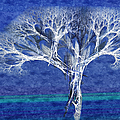 The Tree In Winter At Dusk - Painterly - Abstract - Fractal Art by Andee Design