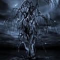 The Tree Of Sawols Cyanotype by John Edwards