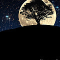 The Tree The Moon The Stars by Mike Nellums