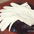 The Trip-the Gloves by Kay Pickens