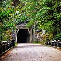 The Tunnel On The Scenic Route by Image Takers Photography LLC - Laura Morgan