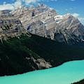 The Turquoise Colored Peyto Lake by Dan Shugar