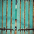 The Turquoise Gate by Holly Blunkall