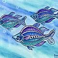 The Turquoise Rainbow Fish by Lori Ziemba