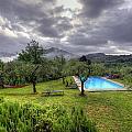 The Tuscan Villa Pool by Matt Swinden
