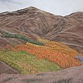 The Valley Of Color by Harvey Rogosin