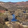 The Verde River In The Verde Canyon Arizona by Ron Chilston