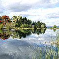 The View Across The Lake by David Birchall