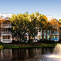 The Villas Of Walt Disney World by Thomas Woolworth