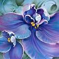 The Violet by Anna Ewa Miarczynska