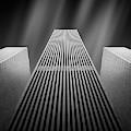 The W by Olivier Schwartz