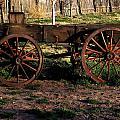 The Wagon by Kenan Sipilovic