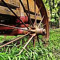 The Wagon Wheel by Paul Ward