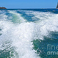 The Wake by Kaye Menner
