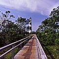 The Walk To Cape Lookout by Skip Willits