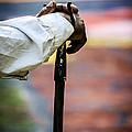 The Walking Stick by Luis Santos Ochoa Duron