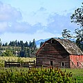 The Warmth Of The Barn by Image Takers Photography LLC- Laura Morgan