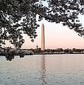 The Washington Monument  by Lois  Ivancin Tavaf