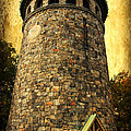 The Watch Tower by Trina  Ansel