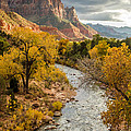 The Watchman In Zion National Park by Pierre Leclerc Photography