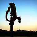 The Water Hydrant by Cricket Hackmann