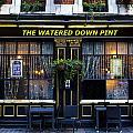 The Watered Down Pint by David Pyatt