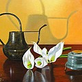 The Watering Can by Glenn Beasley