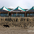 The Watering Hole Perranporth by Terri Waters