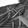 The Way Up by Amanda Holmes Tzafrir