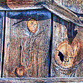 The Weathered Abstract From A Barn Door by Bob and Nadine Johnston