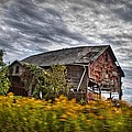The Weathered Barn by Linda Unger