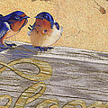 The Welcome Committee by Tracy L Teeter