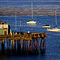 The Wharf by Tom Kelly