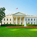 The White House, Green Lawn, Blue Sky by Dszc