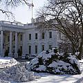 The White House In Winter by JP Tripp