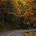 The Winding Road by Debra Crank
