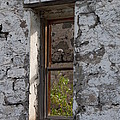 The Window by Rod Giffels