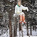 The Winter Greeter by Image Takers Photography LLC - Laura Morgan