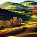 The Winter Is Over by Salvatore Cammarata
