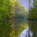The Wissahickon Creek In The Morning by Bill Cannon