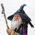 The Wizard And The Raven by J W Baker