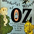 The Wonderful Wizard Of Oz by Jay Milo