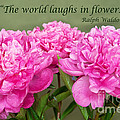 The World Laughs In Flowers by Bob and Nancy Kendrick