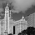 The Wrigley Building Chicago by Christine Till