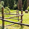 The Zig-zag Fence by Alain De Maximy